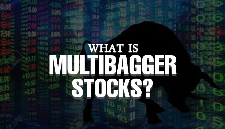 What is Multibagger Stocks? Understand Well To Pick One
